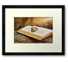 Stone on a Book Framed Print