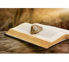 Stone on a Book Photographic Print