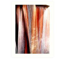 Rust streaks Art Print