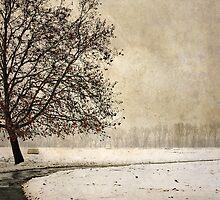 Wintry days by Milos Markovic