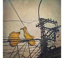 You must be seeing flying frigging yellow Vespas ... Photographic Print