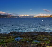 Winter on the Clyde by Eddie Dowds