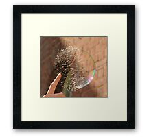 Popping Soap Bubble Framed Print