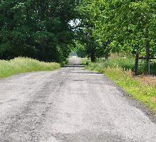 Rural Routes Rule by mltrue
