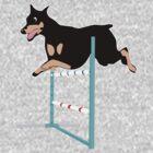 Agility Doberman by dogplay