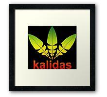 Kalidas Reggae Funny Geek Nerd Framed Print