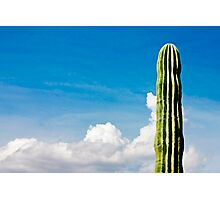 Juan is the Loneliest Number Photographic Print