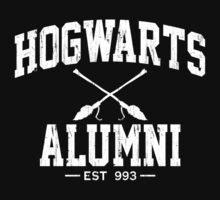Hogwarts Alumni - Harry Potter by bluechili
