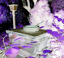 Night Walk Through a Pixies' Garden by DanaMS