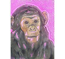 Chimpanzee on Pink Background Photographic Print