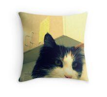 Office Cat Throw Pillow