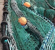 Nets 1 by gailmiller