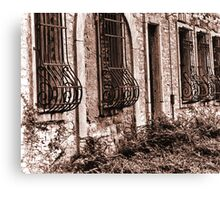 Window Covers Canvas Print