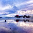 California  Landscapes and Seascapes by Susan Gary