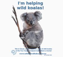 I'm helping wild koalas - Cloud by Echidna  Walkabout
