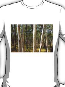 Summer gums - Sinclair's Gully, Norton Summit, Adelaide Hills T-Shirt