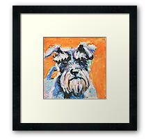 Smart Schnauzer Framed Print
