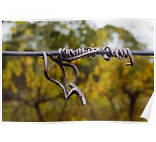 Dried vine tendril Sinclair's Gully vineyard Poster