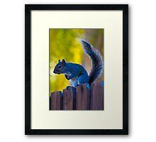 Hi Neighbor... Framed Print