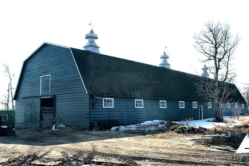 The Old Fashioned Grey Barn by Leslie van de Ligt