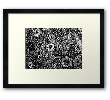 Dahlias and Daisies standing together 2 Framed Print
