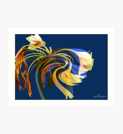 FLEUR EN ROSE No3 Art Print