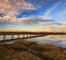 Bolsa Chica Wetlands in Wide Angled View by Susan Gary