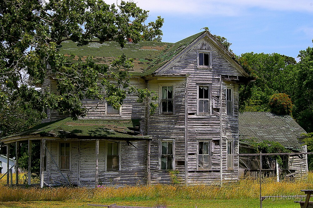 A Relative of the Munsters lives Here... by Larry Llewellyn