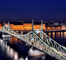 Liberty Bridge, Budapest, Hungary by erkaphoto
