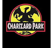 charizard park Photographic Print