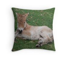 'Relaxing' Throw Pillow