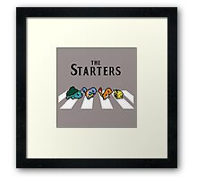 pokemon the starter Framed Print