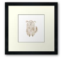 Fluffy Dog Framed Print