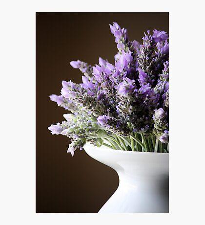 Lavender in Vase Photographic Print