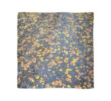 Philip Johnson Scarve Collection #2 - Autumn Scarf