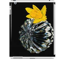 Crystal Collection-Irish Design iPad Case/Skin