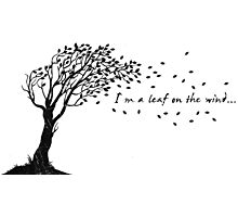 I'm a Leaf on the Wind Photographic Print