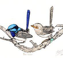 The blue wrens by SnakeArtist