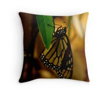And The curtain rises .. Monarch dance  Throw Pillow