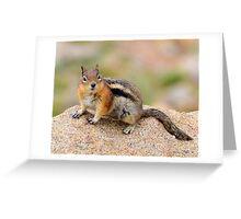 Furry friend Greeting Card