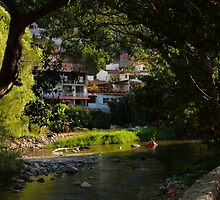 at the river IV - en el rio by Bernhard Matejka
