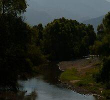 river pitillal II by Bernhard Matejka