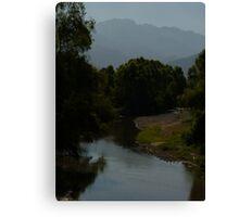 river pitillal II Canvas Print