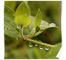Droplet 1 Poster