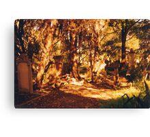 Golden Graveyard Canvas Print