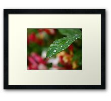 Droplet 5 Framed Print