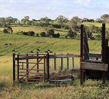 Adelaide Hills Farming by Michael Humphrys