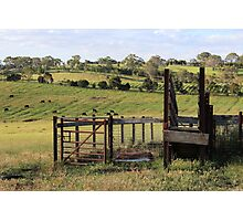Adelaide Hills Farming Photographic Print