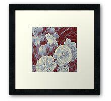 Red & White Framed Print