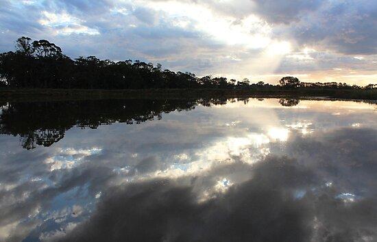 Schmiess Road, Echunga, South Australia by Michael Humphrys